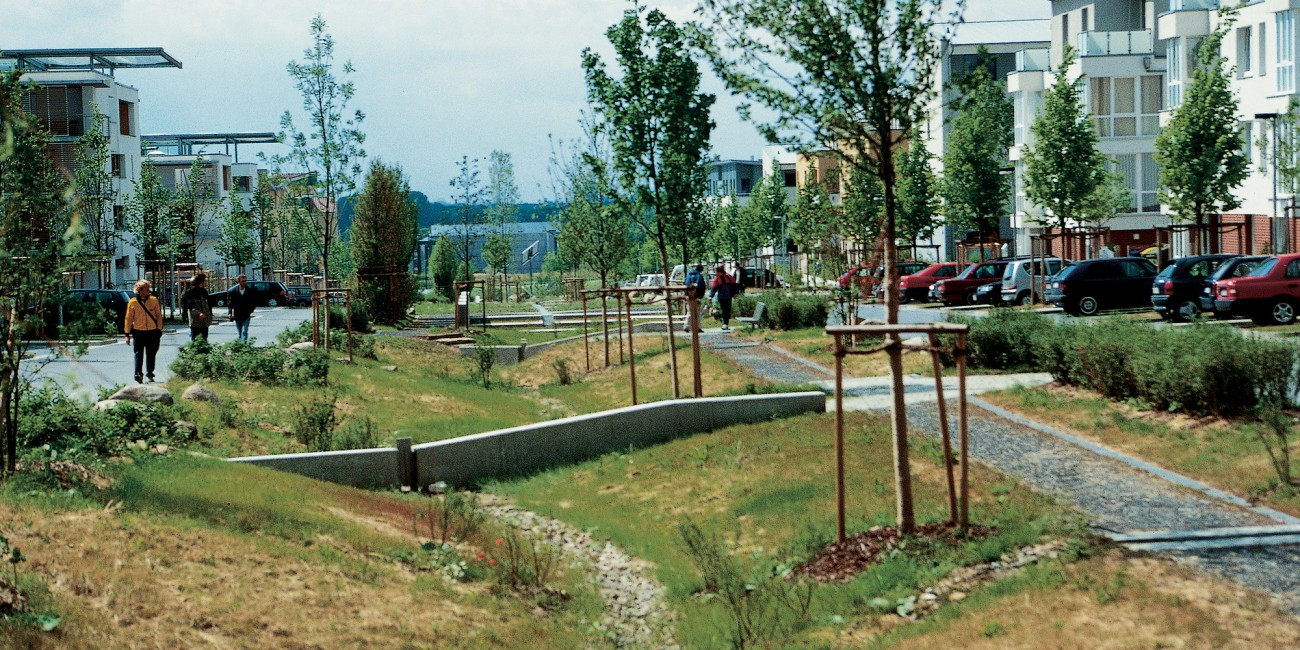 Bioswales Urban Green Blue Grids