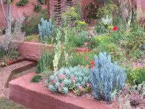 Mediterrane beplanting