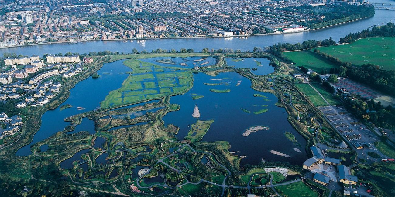 Wetlands Natural Water Filter