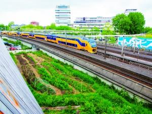 Water Sensitive Rotterdam