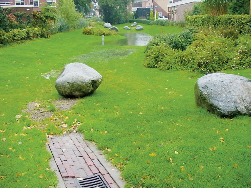 Bioswales urban green blue grids for Wadi in tuin