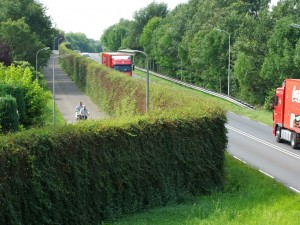 Green noise barriers