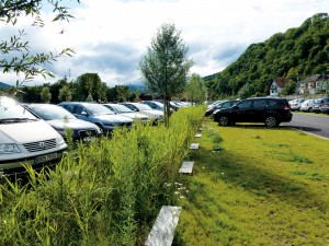 Parkeerplaatsen met groen
