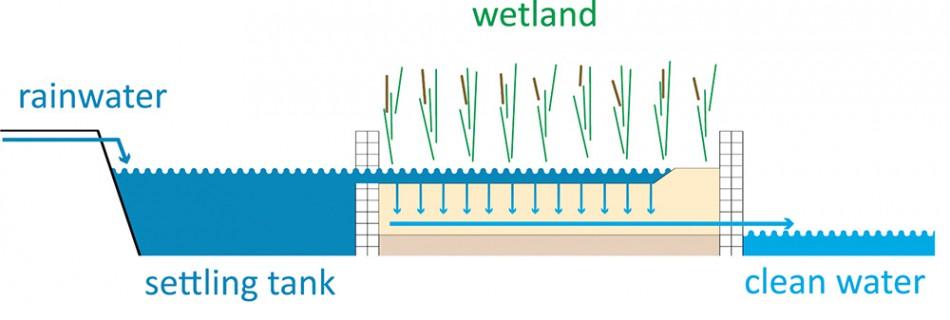 Horizontal Helophyte Filter Urban Green Blue Grids