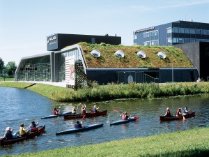 Sloping green roofs