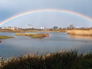 Urban wetland London – London Climate Change Partnership