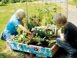 Square metre garden
