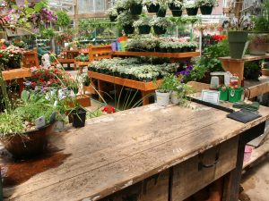 Garden centres and home improvement store