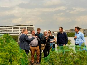 Sint-Andries: working together towards a climate robust neighbourhood